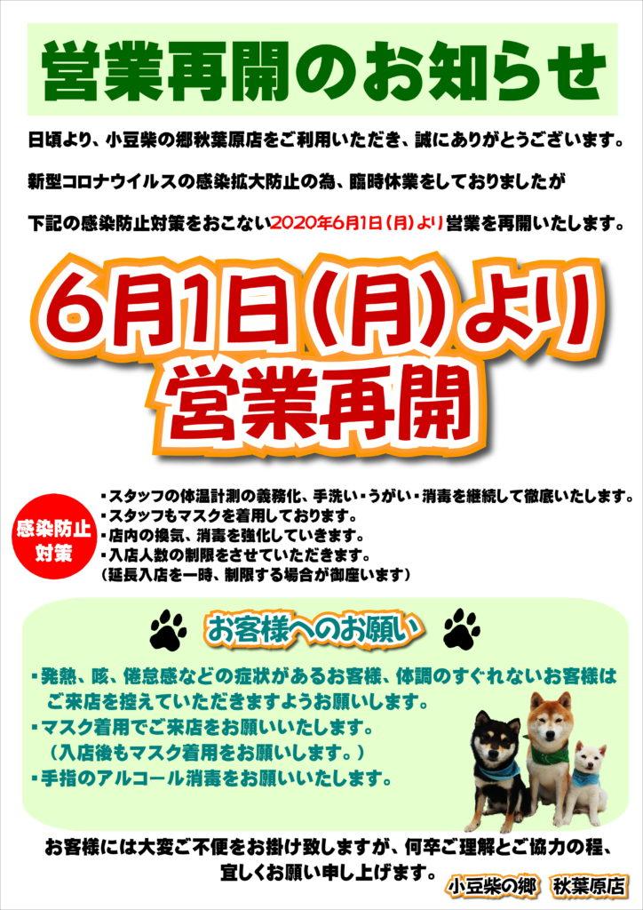 秋葉原店再開POP(改)_01
