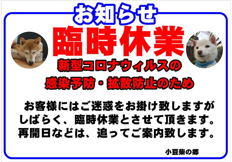 小豆柴の郷 休業のお知らせ